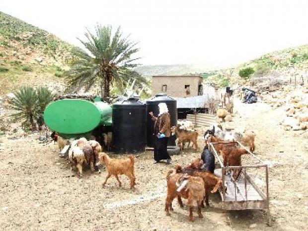 <p>[10666] 23  مريم دراغمة من قرية خربة المالح تغسل الأواني. تفتقر العائلة للمياه بسبب انعدام البنى التحتية ونقص المياه، آذار 2009.  </p><p>Photo credit: Atef Abu A-Rob, B'Tselem</p>